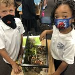 2nd Grade Animal Habitats